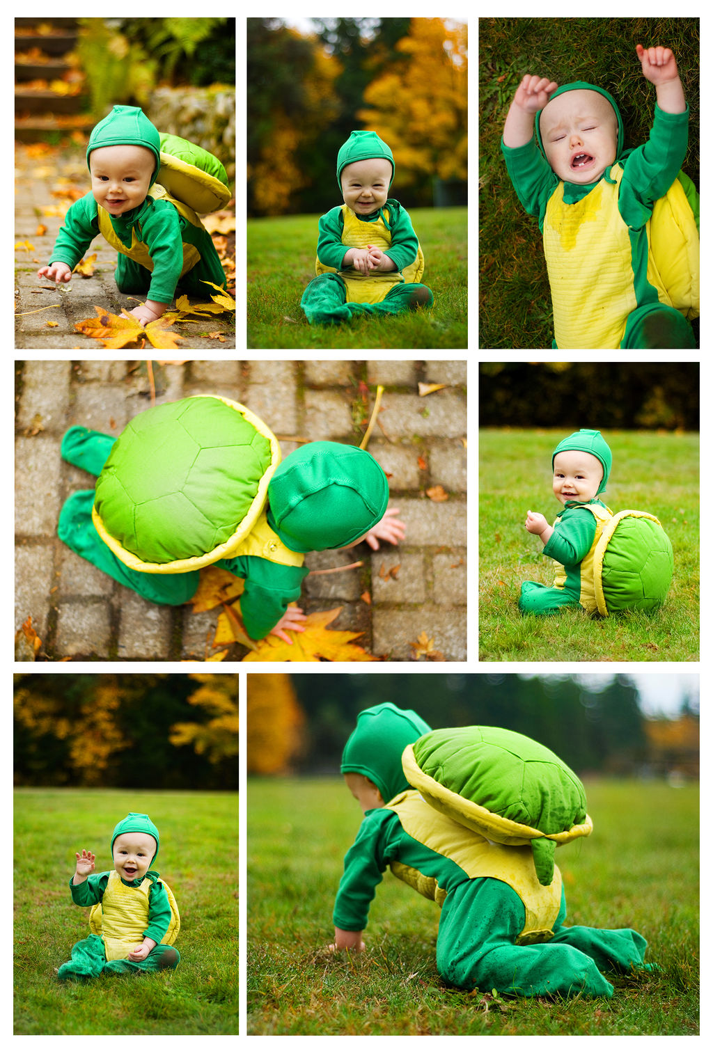 Turtlebaby